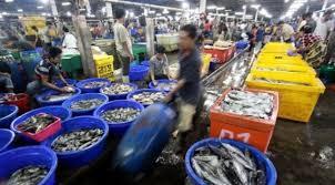 pasar ikan1